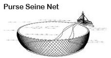 Purse Seine Net